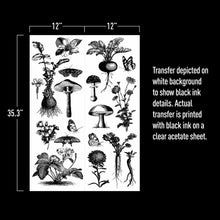 "Load image into Gallery viewer, Redesign with Prima Transfer - Fungi Forest 24"" x 35.3"" Redesign Decor Transfer Rub on Decal"