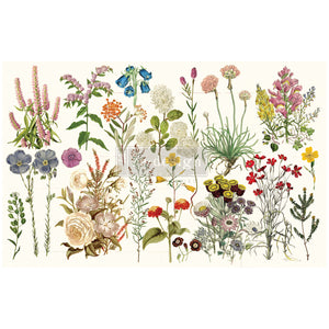 "WILD HERBS Decoupage Decor Tissue 19"" x 30"" - Redesign With Prima One Sheet"