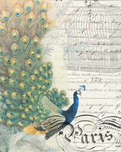 "Load image into Gallery viewer, Peacock Ephemera Left 20"" x 30"" Roycycled Treasures Decoupage Tissue Papers -"