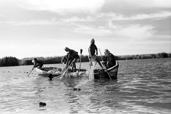 Berbera men fishing with nets