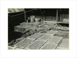 Rice drying in a farm yard
