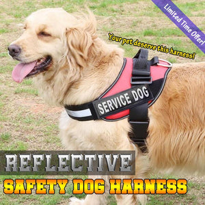 Reflective Safety Dog Harness