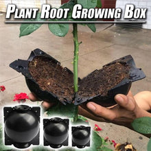 Load image into Gallery viewer, Plant Root Growing Box