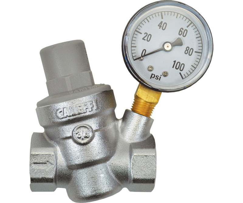 Dilution Solutions Pressure Regulator with Gauge, 3/4 in FPT x FPT