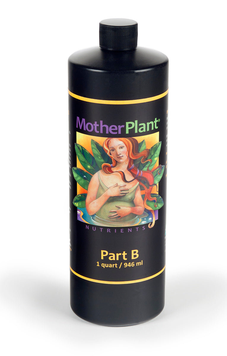 MotherPlant B, 1 qt