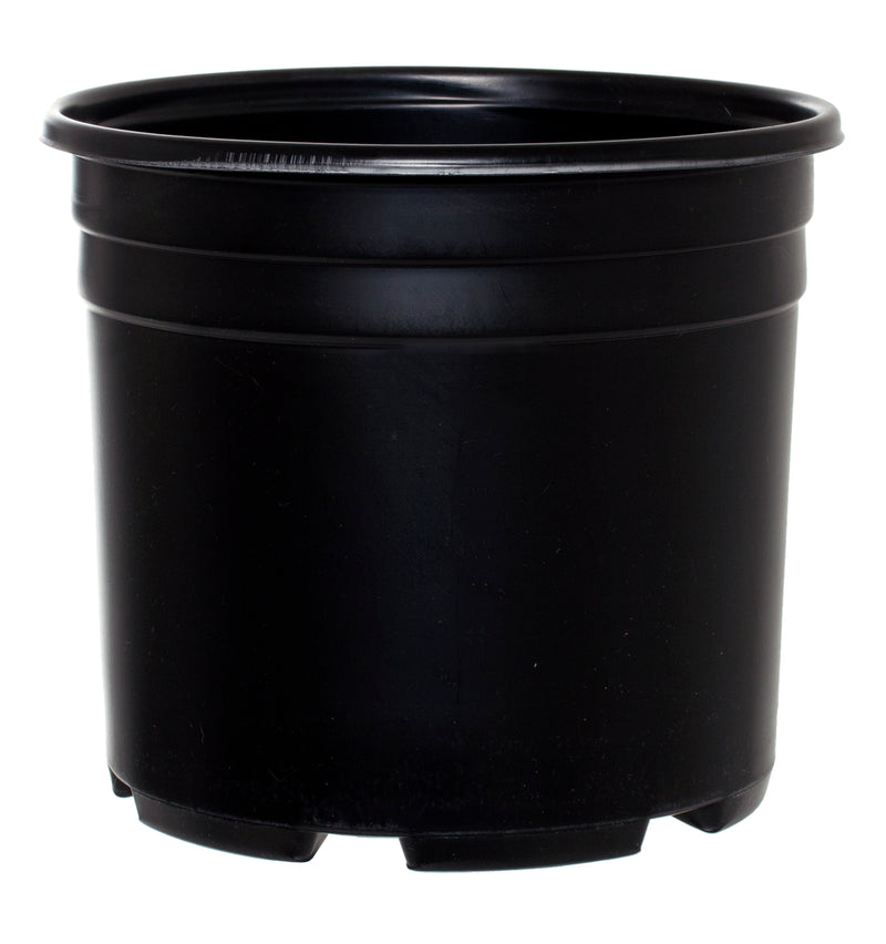 Pro Cal Thermo Pot, Squat, 3 gal
