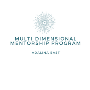 Multi-Dimensional Mentorship Program