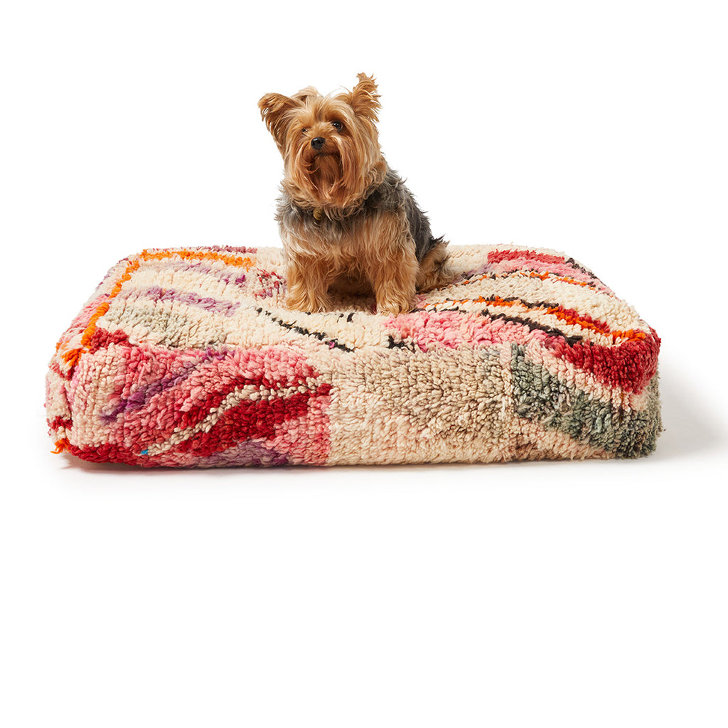 Boujad Dog Bed, Medium - Item #11
