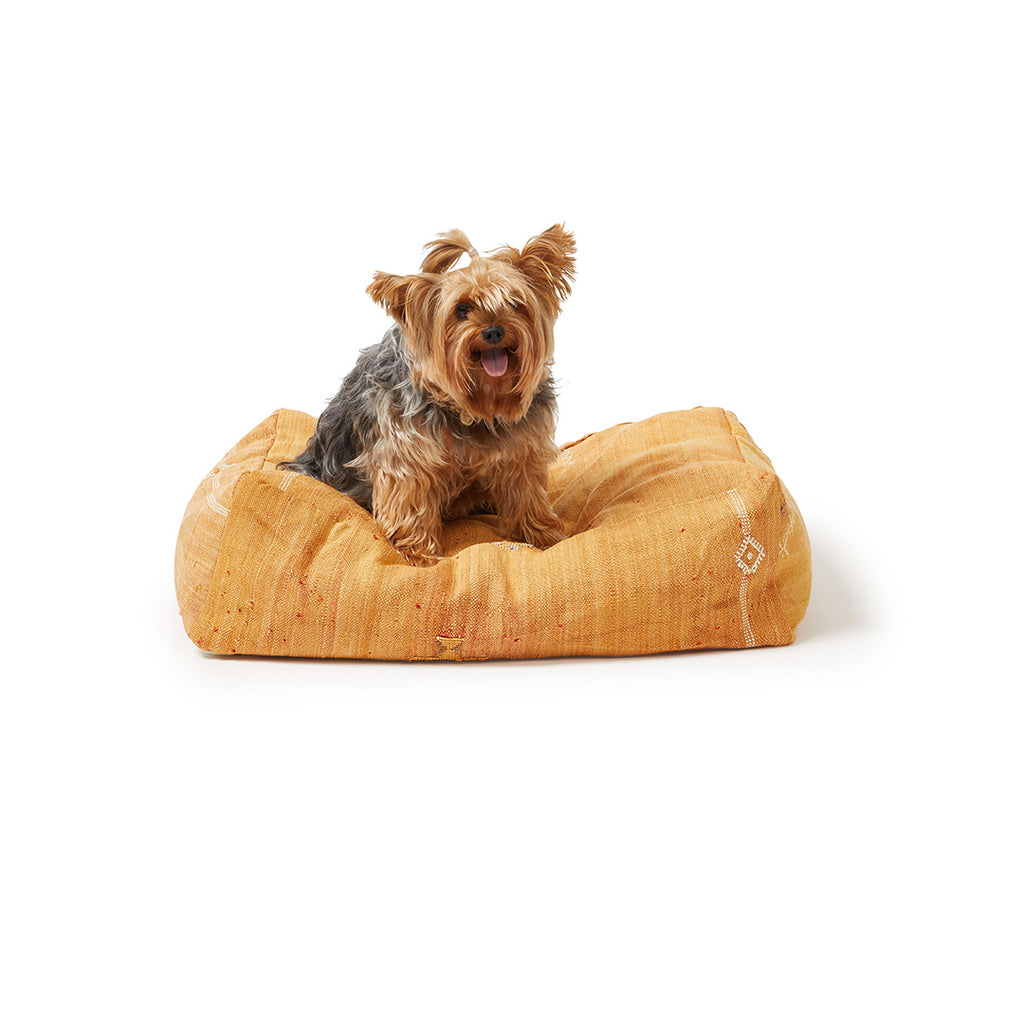 Cactus Silk Dog Bed, Rust Small