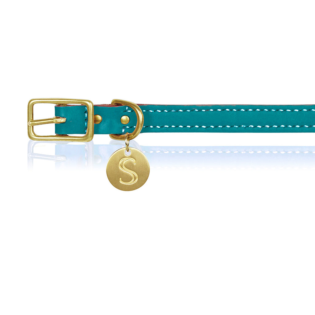 Leather Dog Collar - Turquoise