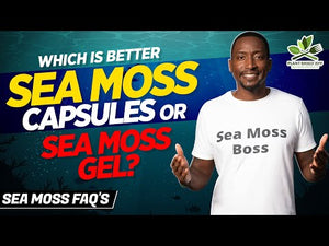 Load and play video in Gallery viewer, NEW Sea Moss Complete Capsules (Shipping Starts Sept 28)