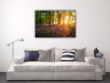 Load image into Gallery viewer, Sunrise through the woods