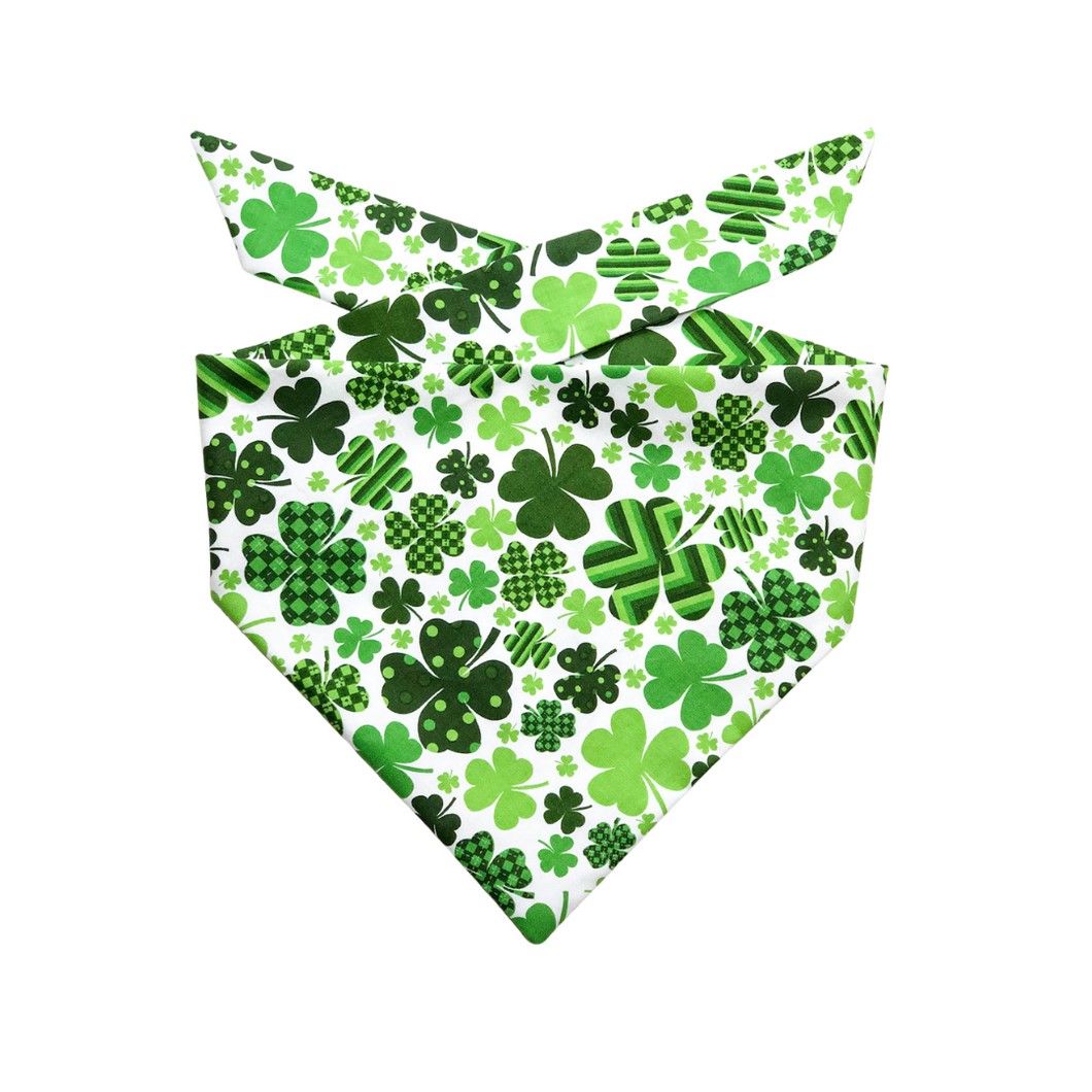 Feline Lucky Bandana - Pet Musings