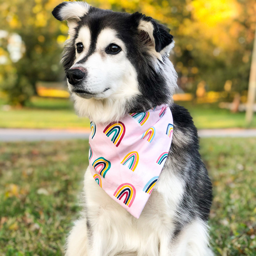 Pink Rainbow Bandana & Scrunchie Set - Pet Musings