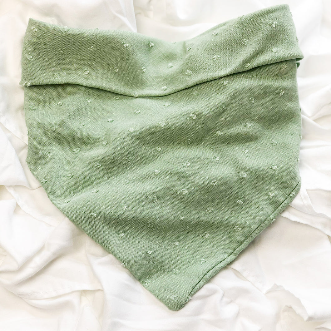 Green Bandana - Pet Musings