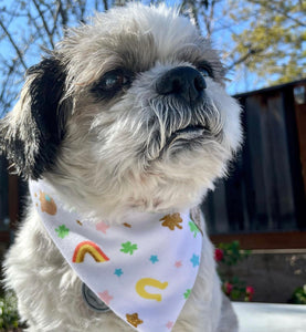 You're My Lucky Charm Soft Bandana - Pet Musings