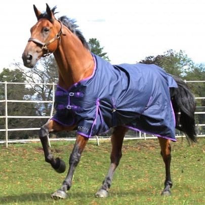 Trojan Lite-Weight Turnout Rug