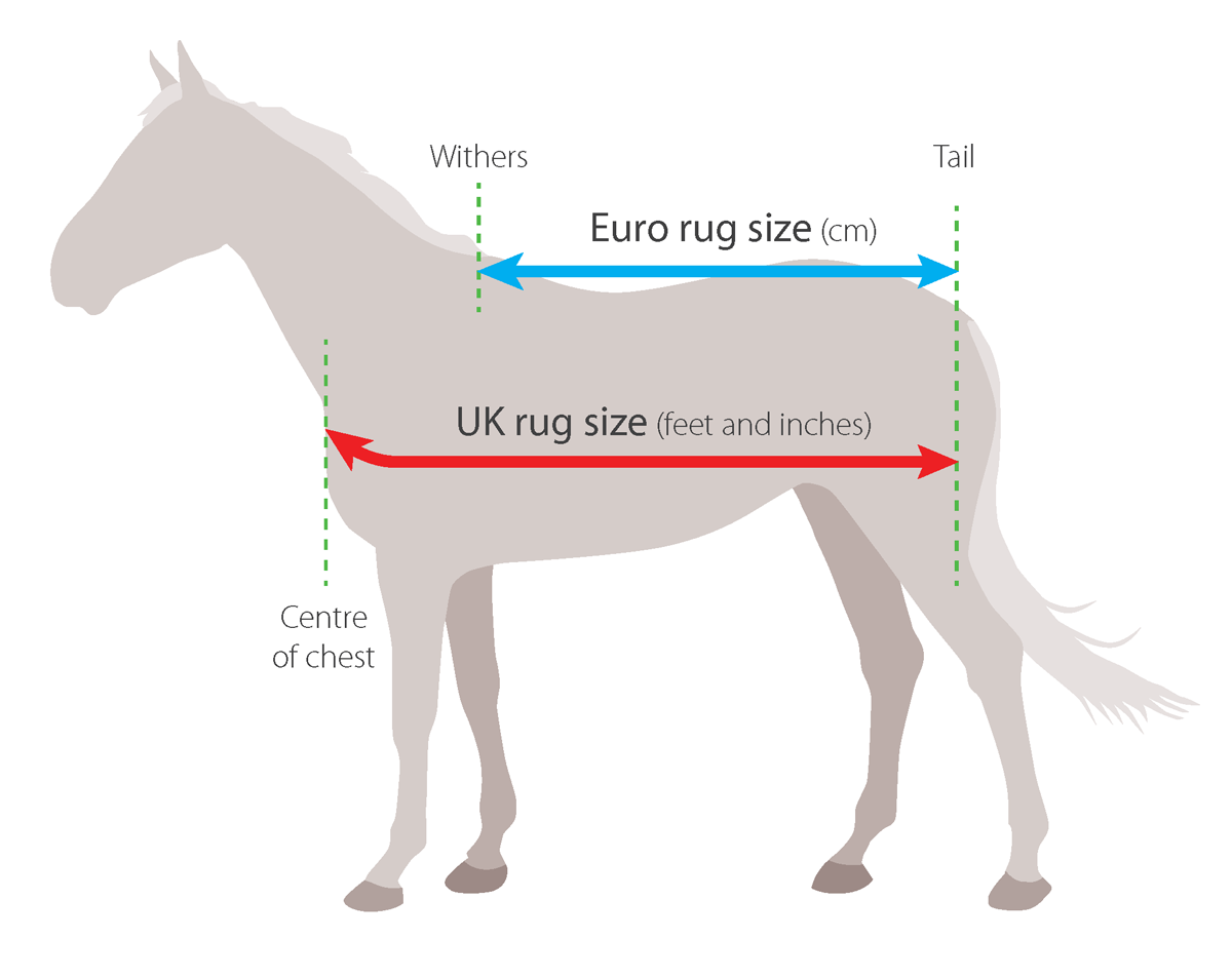 So you know how to measure your horse for a new rug!!