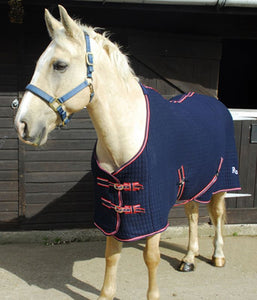 Clearance Rhinegold Premium Tech 'Celltex' Cooler Rug