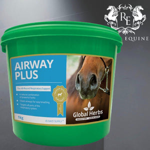Global Herbs Airway Plus