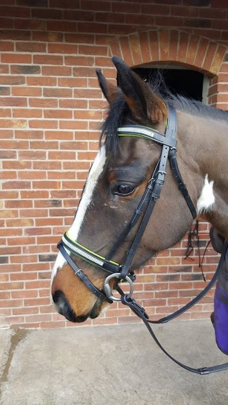 LIME - PADDED COMFORT DIAMANTE BRIDLE