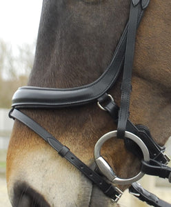 Rhinegold Leather Pro-Anatomical Bridle