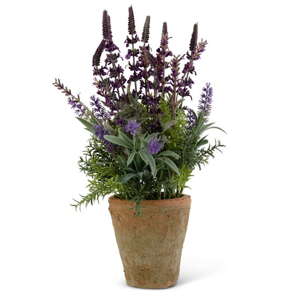 17 Inch Purple Lavender in Distressed Clay Pot