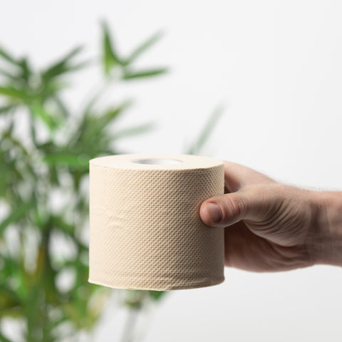 Unbleached Bamboo Toilet Roll - try a retail box