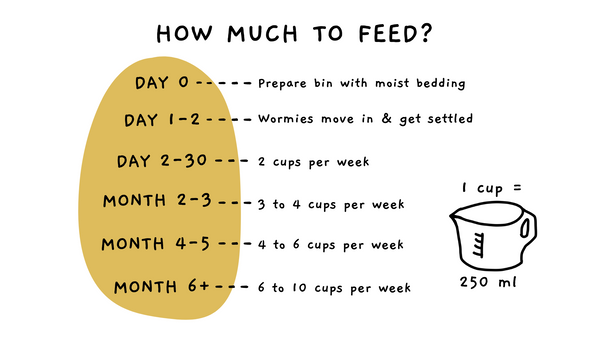 How much to feed them