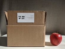 "Load image into Gallery viewer, A cardboard box with ""The Box Of Life"" written on it, beside an apple for scale"