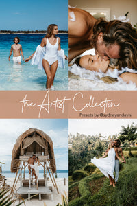 The Artist Collection - 17 Desktop Presets