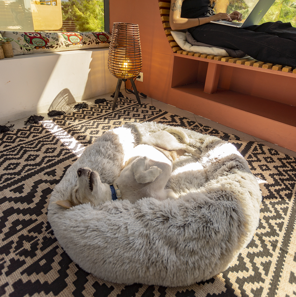 Luxury Orthopedic Cuddler Bed For Dogs