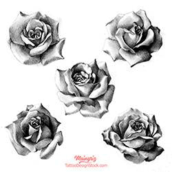 5 realistic roses digital tattoo designs in black and grey style