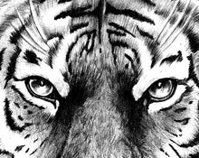 Load image into Gallery viewer, Realistic tiger tattoo design high resolution download