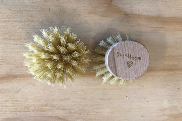 Wooden Dish Brush (Replacement Heads)