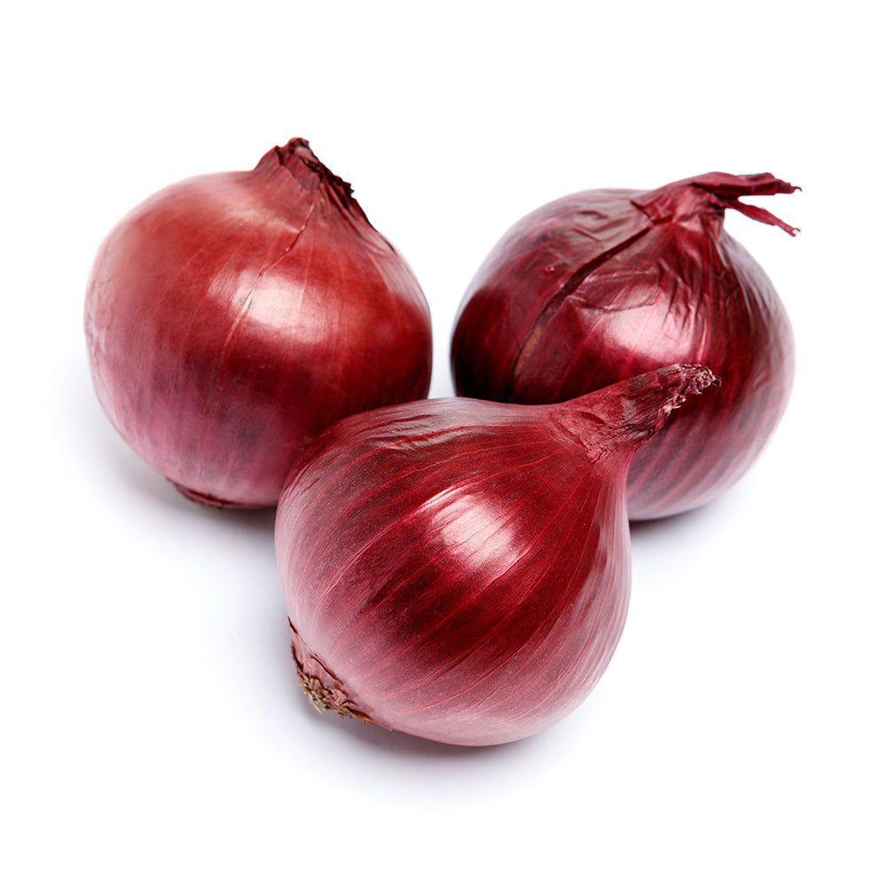 Red Spanish Onion
