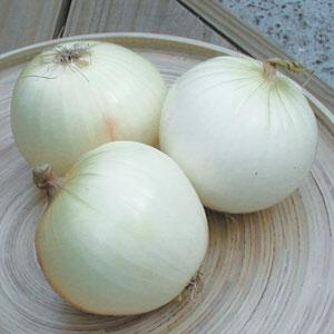 White Spanish Onion