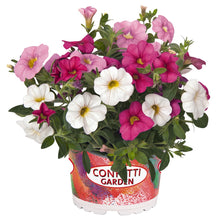 Load image into Gallery viewer, Confetti Garden Hawaiian Pink Fusion