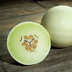 Melon Snow Mass