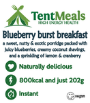 Blueberry Burst Breakfast