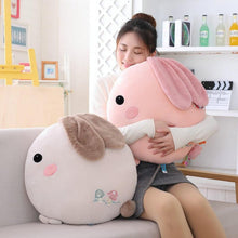 Load image into Gallery viewer, Round Rabbit Pillow Plushie