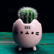 Load image into Gallery viewer, Neko Succulent Planters