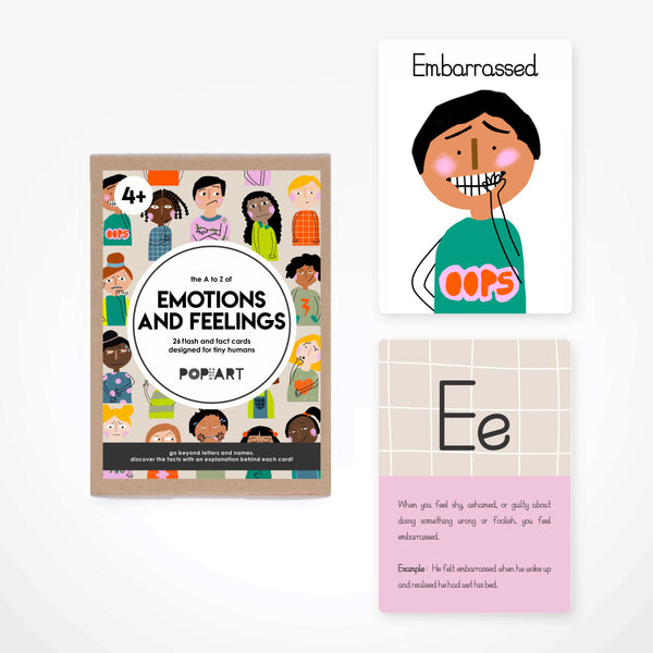 Fact & Flash Cards - Emotions and Feelings