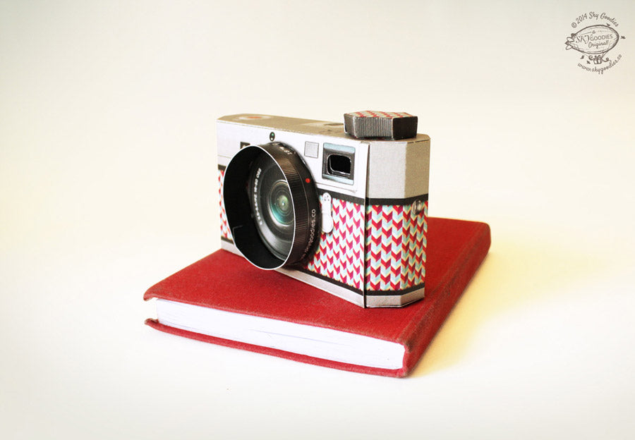 DIY Camera Picture Frame