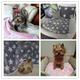 Soft Flannel Pet Dog Blanket Dots Printed