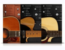 Acousticsamples AS Guitar Collection