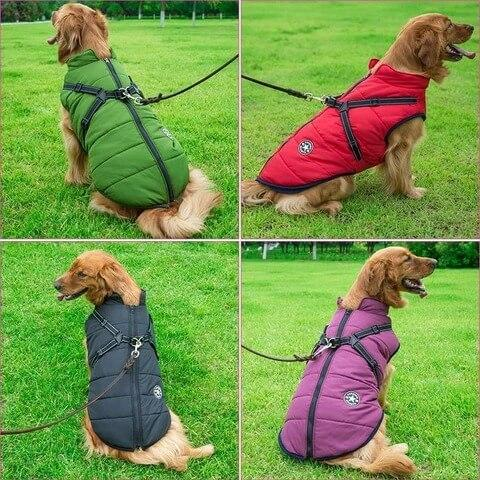 HomePet™ Dog Winter Waterproof Jacket With Harness