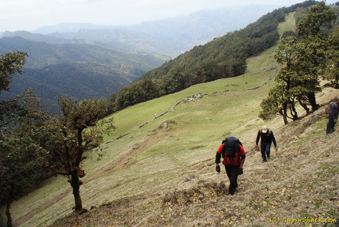 Hiking to the Nag Tibba Ridge