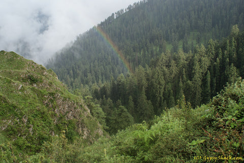 A rainbow spans the forest near Deoban