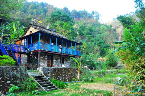 A lodge amidst the greenery at Rudraprayag
